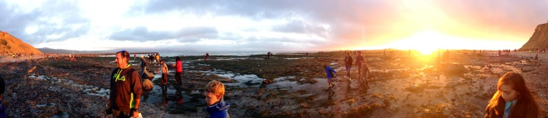 tidepool sunset