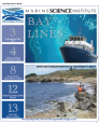 BayLines Winter Edition 14'-15'