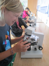 Studying plankton at the Gulf of the Farallones National Marine Sanctuary Visitor Center in San Francisco