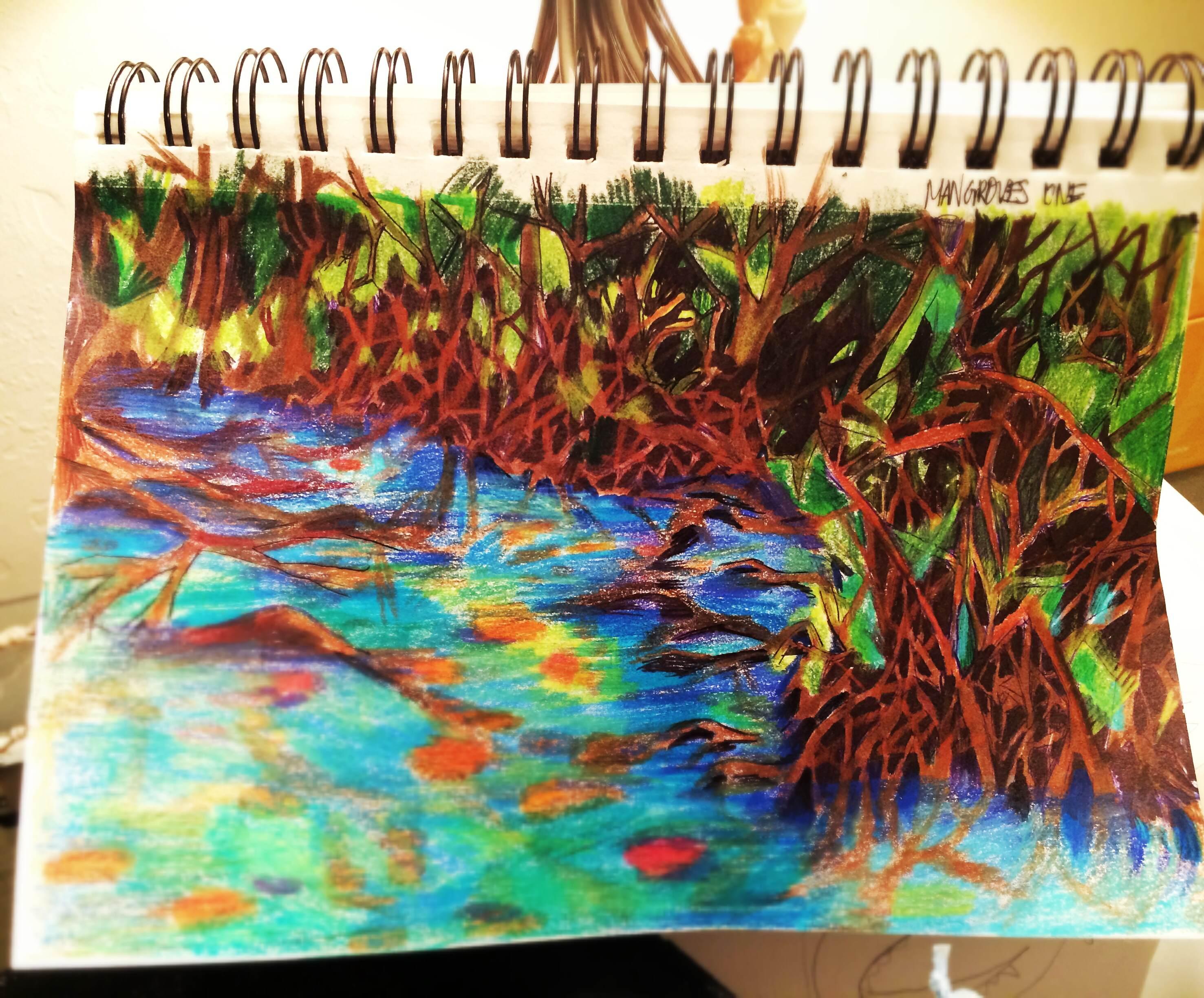 Mangrove essay
