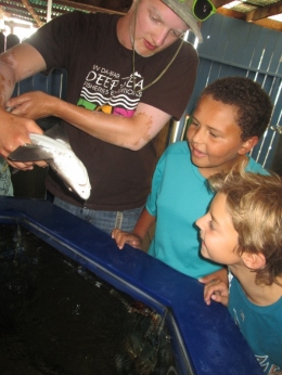 Enjoy studying live animals at our aquarium.