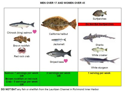 bay area fish_men