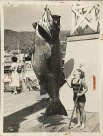 365px-Giant_sea_bass