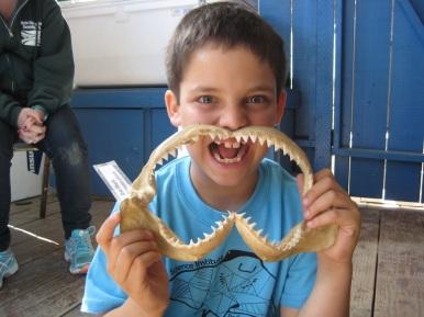 Nice jaws!