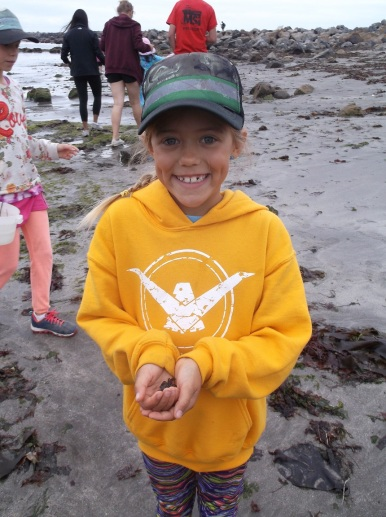 Tidepool findings